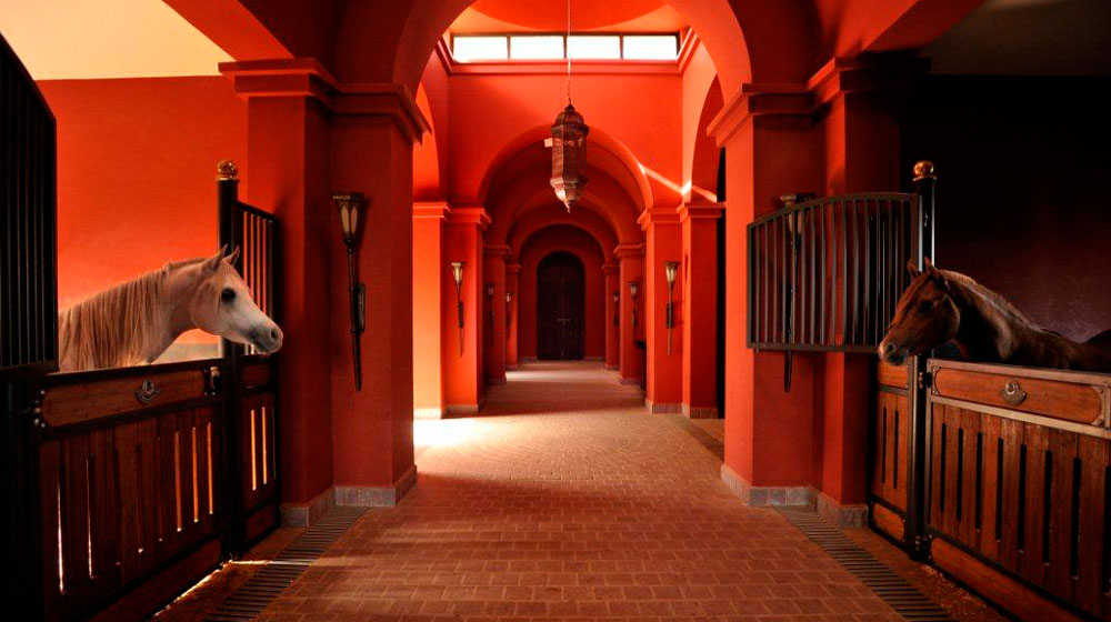marrakesh-hotel-selman-marrakech-393179_1000_560
